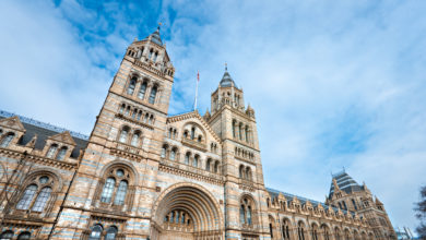 musei gratuiti Londra